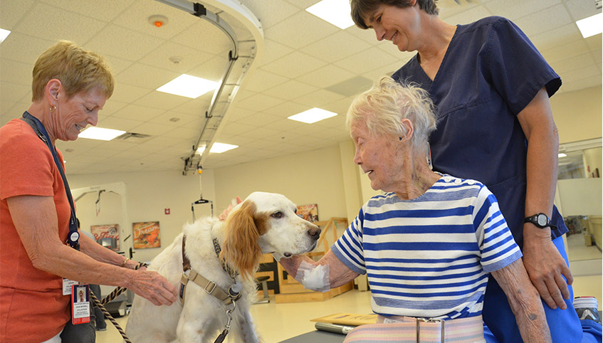 Pet therapy dog Ginger visiting patients.
